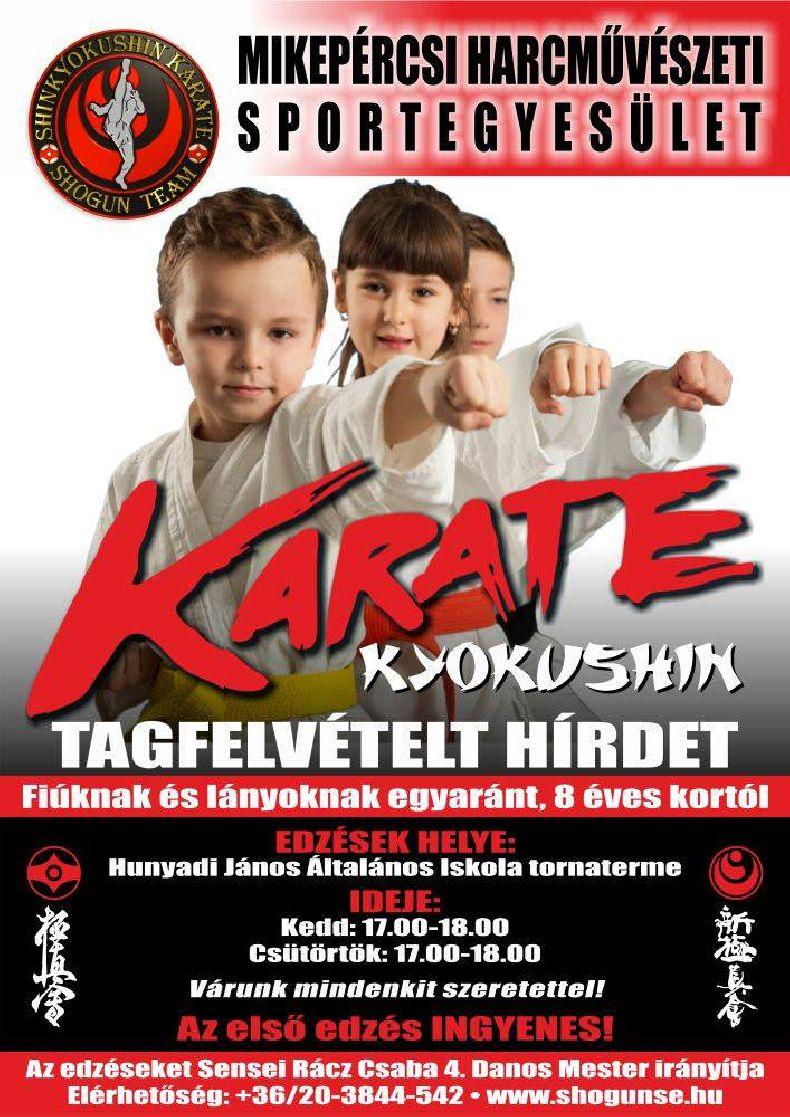Karate tagfelvétel